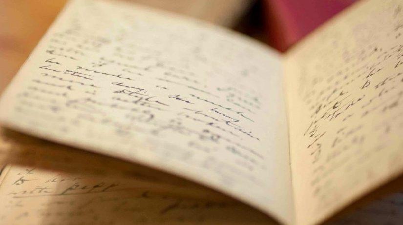 Уловки для студента: дневник.